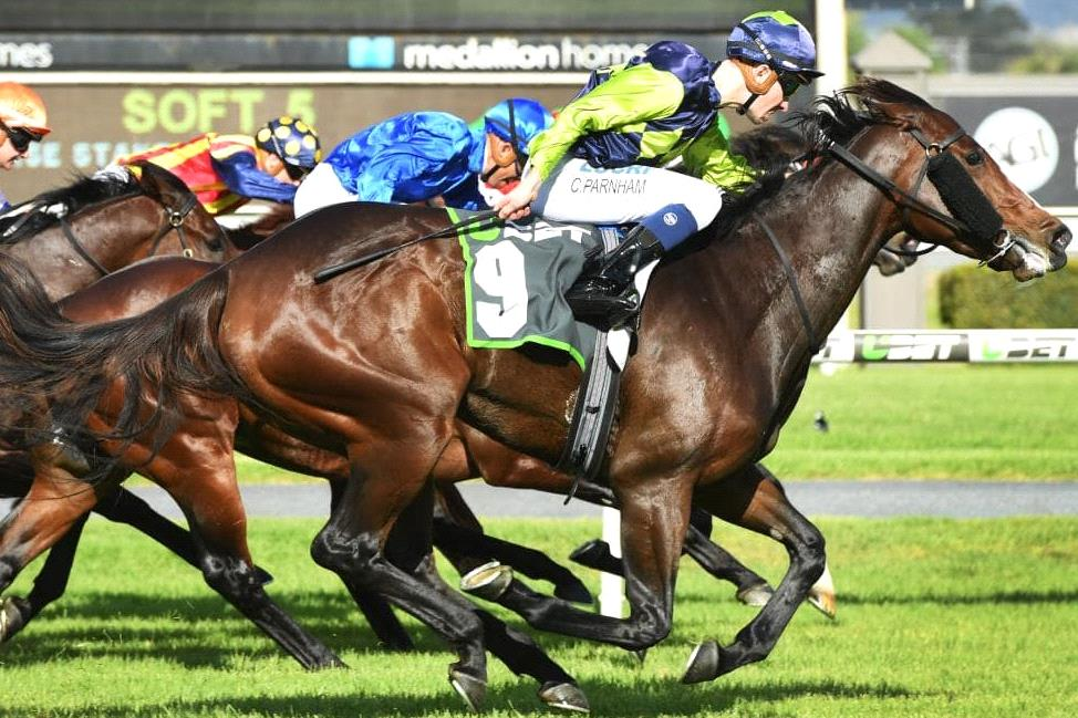 Could this mare pull off another shock in the Newmarket Handicap?