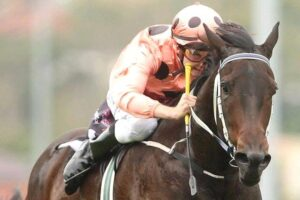 Jarrad Noske riding Black Caviar early in the famous mare's career.