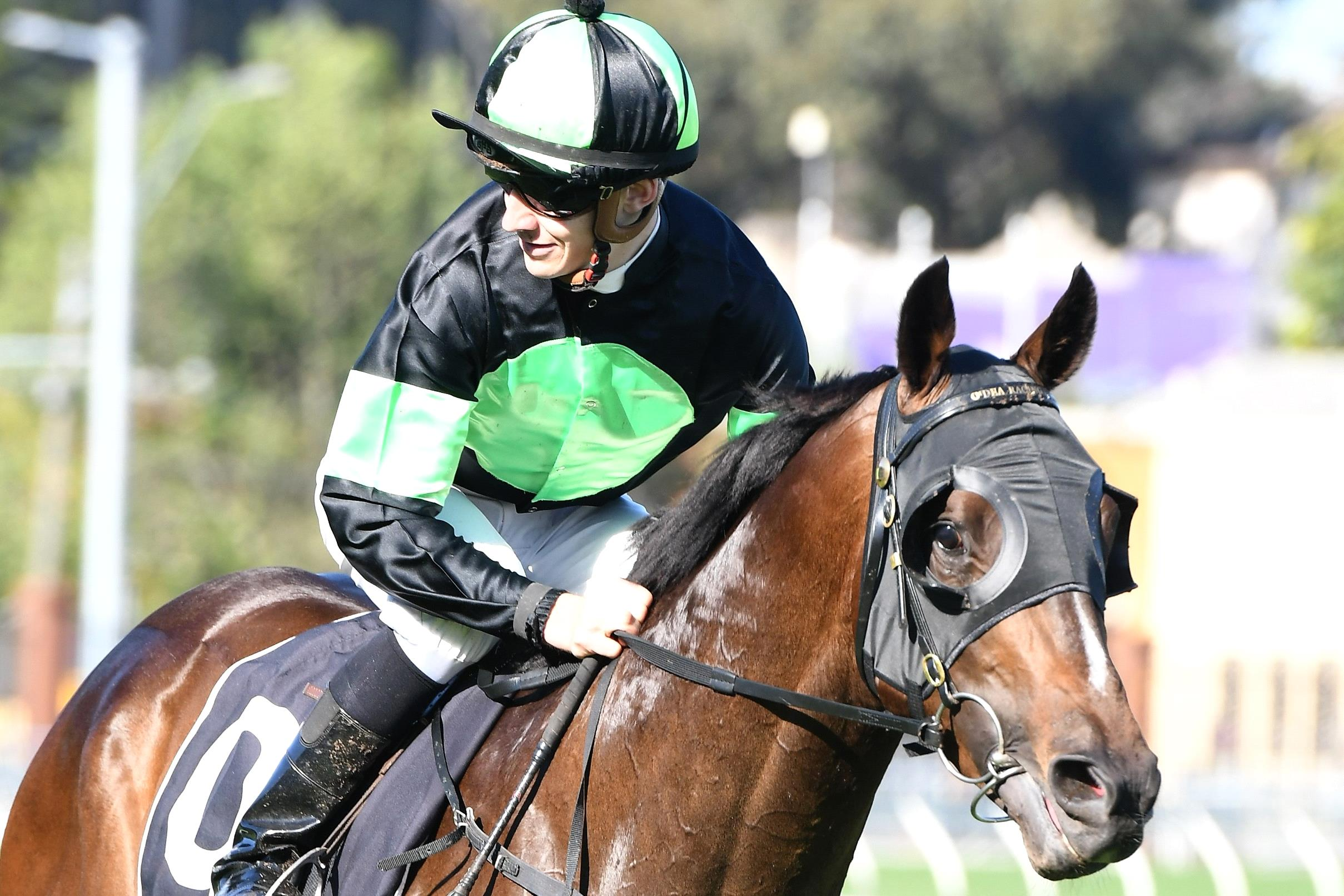 Sesar will be a noticeable absentee from the three-year-old division during the Sydney autumn.