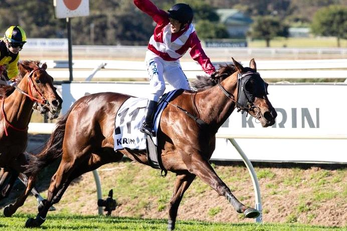 Galaxy Star will chase another Group I win in the Kingston Town Classic.