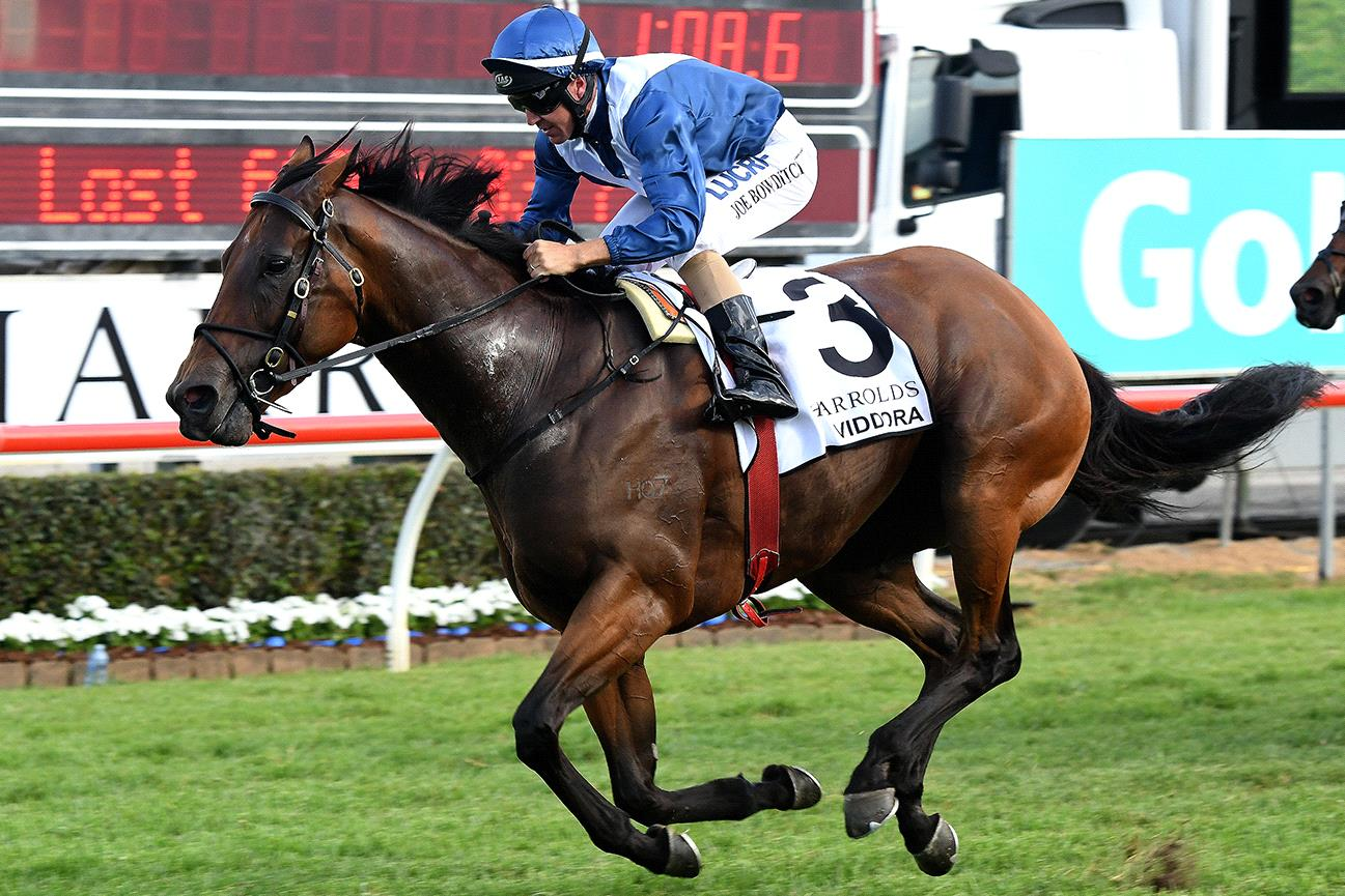 This horse and jockey should rack up another Group I victory on Saturday