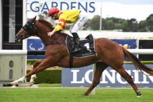 Chess Star flies to the line in the Rosehill opener on Saturday.
