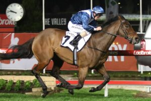 Viddora is set to return to Perth for another crack at the Winterbottom Stakes.