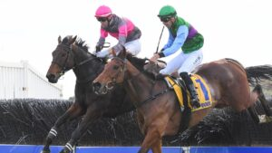 Gold Medals (left) and Zed Em jump the last hurdle before finishing one-two in the Grand Annual Steeplechase. Picture: Racing Photos via Getty Images