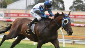 Explosive Jack is the favourite for the South Australian Derby.