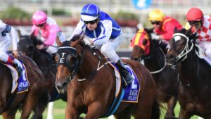 Vanna Girl will face a strong field in the Hollindale Stakes. Picture: Trackside Photography