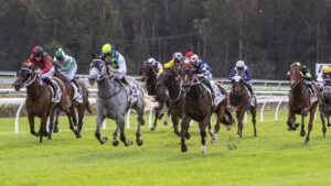 Polly Grey (white sleeves) holds off Aliferous to win the Gosford Gold Cup. Picture: Ashlea Brennan Photography