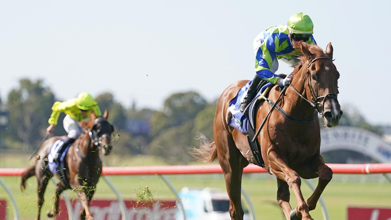 Beau Rossa is bound for The Goodwood. Photo: Scott Barbour/Racing Photos via Getty Images