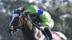 James McDonald rides Knowitall Jack to victory at Canterbury. The horse can figure at Mornington on Tuesday. Photo: AAP Image/Simon Bullard