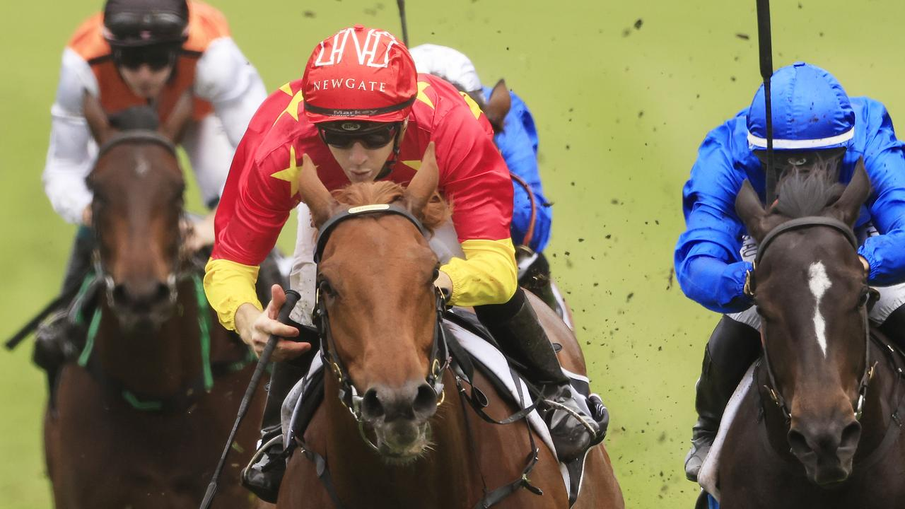Tiger Of Malay will contest the Group 2 Champagne Stakes this Saturday. Picture: Mark Evans/Getty Images