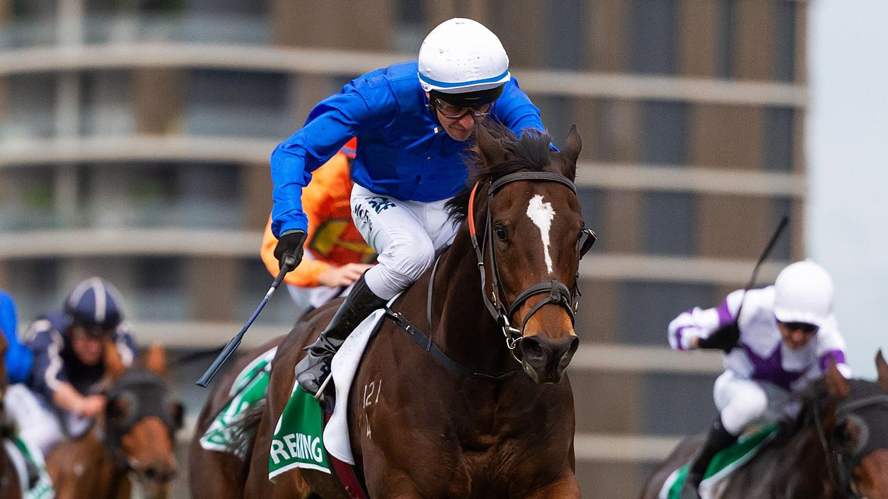 Trekking has eased in betting after drawing wide in the Doomben 10,000. Picture: AAP