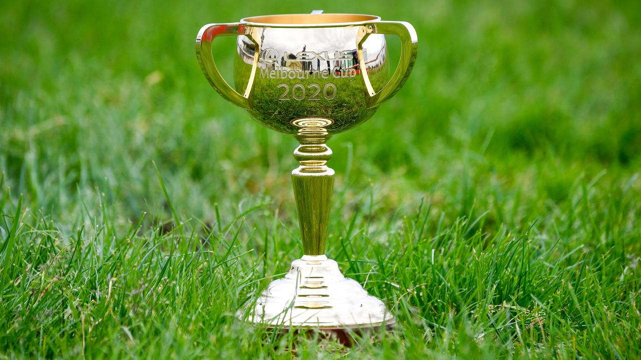 One of the 24 places in the Melbourne Cup will go on the line in the Andrew Ramsden at Flemington on Saturday. Photo: Reg Ryan/Getty Images.
