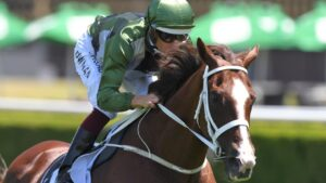 Kings Will Dream will have two runs during the Queensland winter carnival before retirement. Picture: AAP