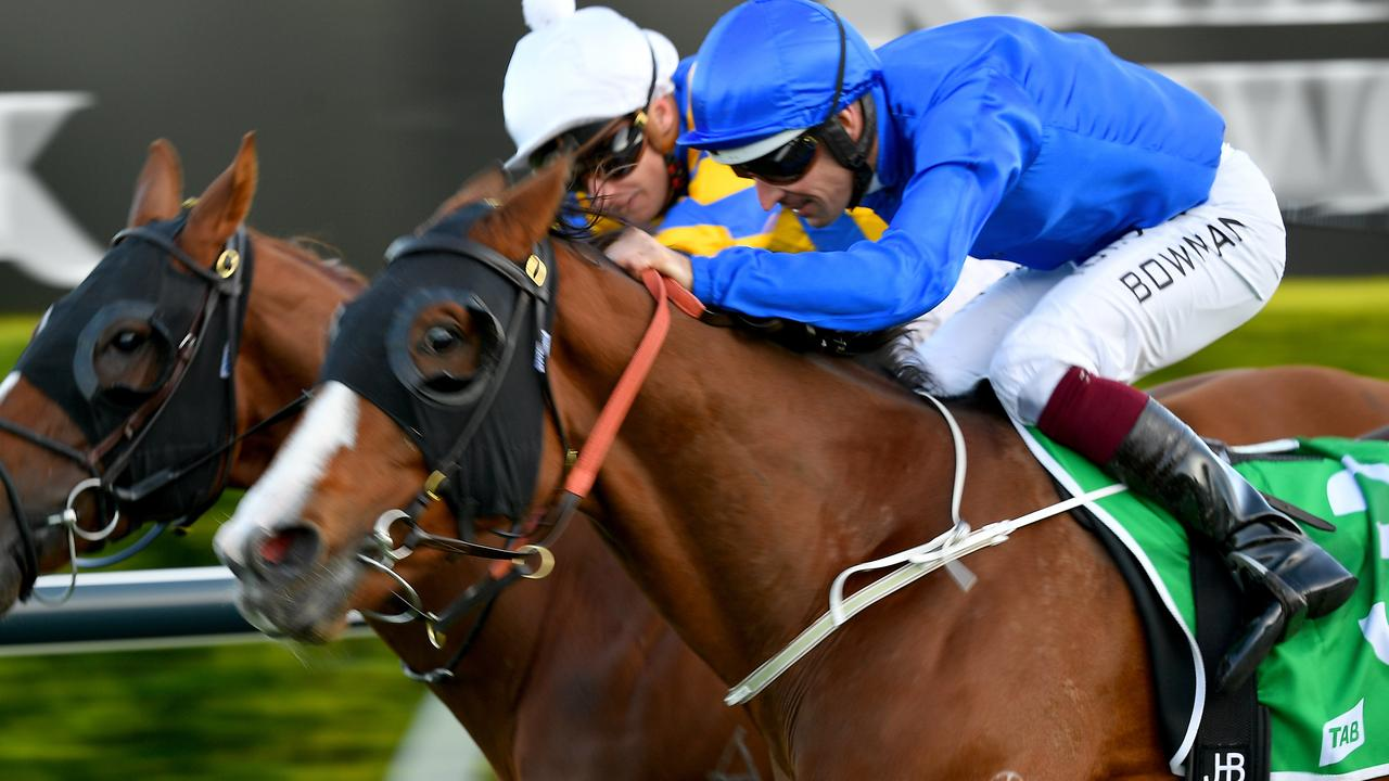 Phaistos looks ready to peak second-up in Friday's Scone Cup. Photo: Dan Himbrechts/AAP Image