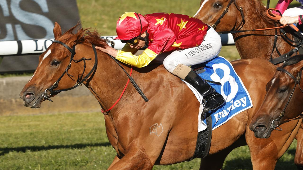 Prime Star will be chasing more Inglis prizemoney riches in Saturday's $300,000 Inglis 3YO Guineas. Picture: Mark Evans/Getty Images