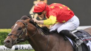 The connections of Wild Ruler will be in for a big payday should the colt win the Doomben 10,000. Picture: Getty Images