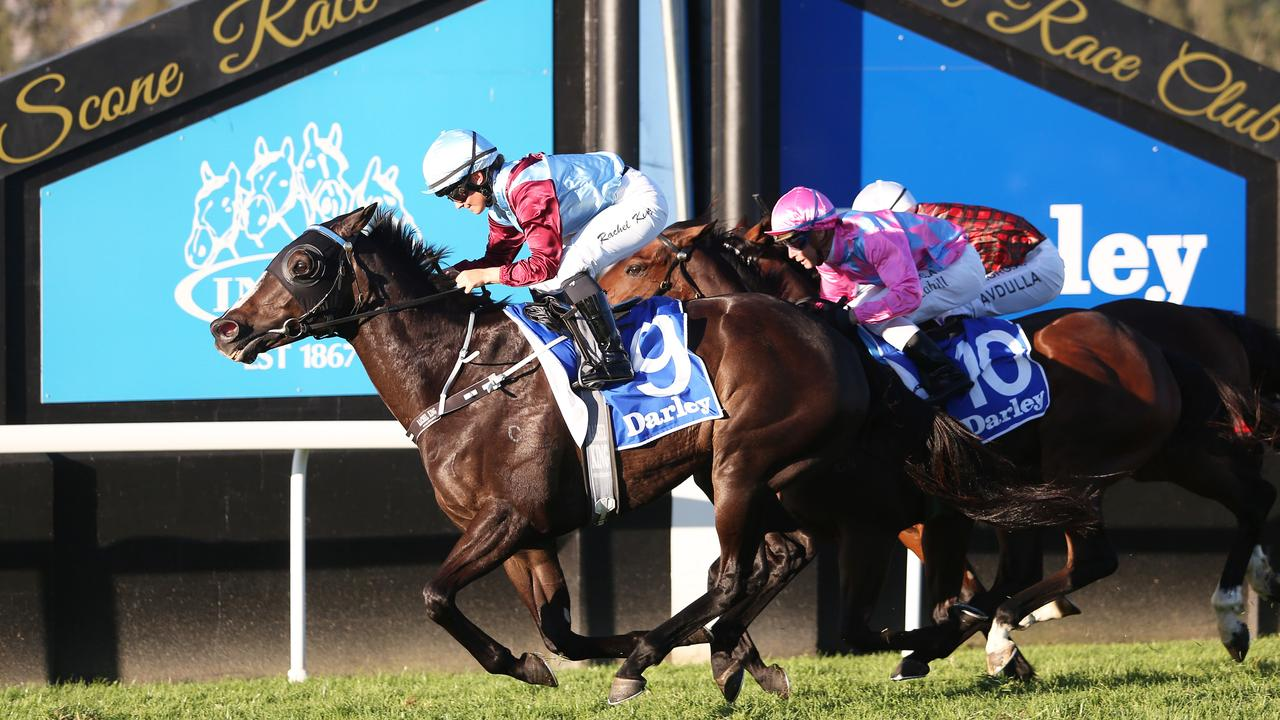 Laure Me In wins the Scone Cup. Photo: NCA NewsWire / Peter Lorimer.