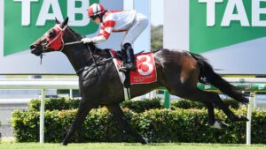 Racing action at the Sunshine Coast. Photo: Patrick Woods/Sunshine Coast Daily.