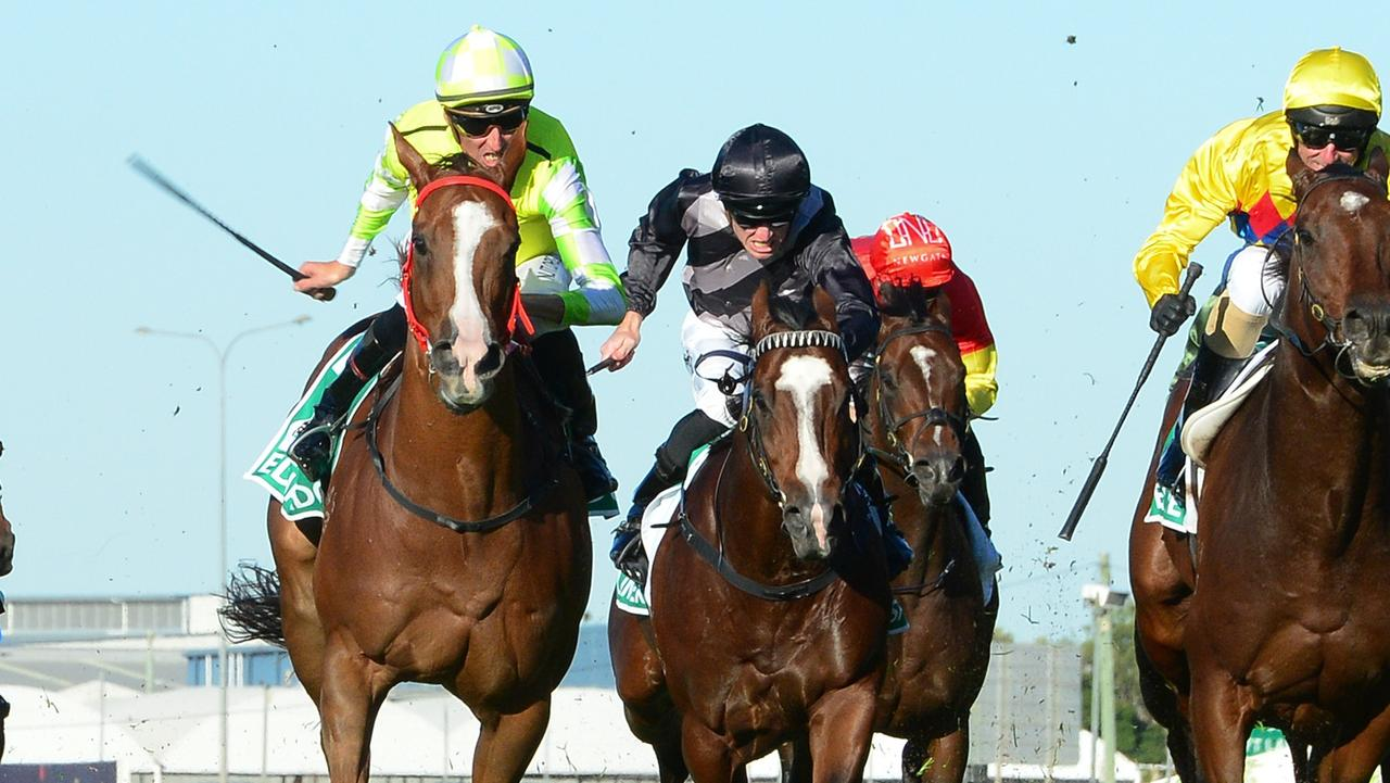 Eduardo fends off his rivals to win the Doomben 10,000. Picture: Grant Peters/Trackside Photography