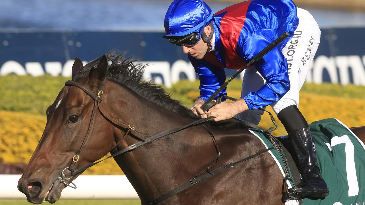 Everest slot-holders are expected to come knocking after Lost And Running won again at Rosehill. Picture: Mark Evans/Getty Images