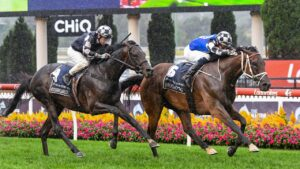 Mugatoo winning the All-Star Mile at Moonee Valley. Photo: Brett Holburt/Racing Photos via Getty Images