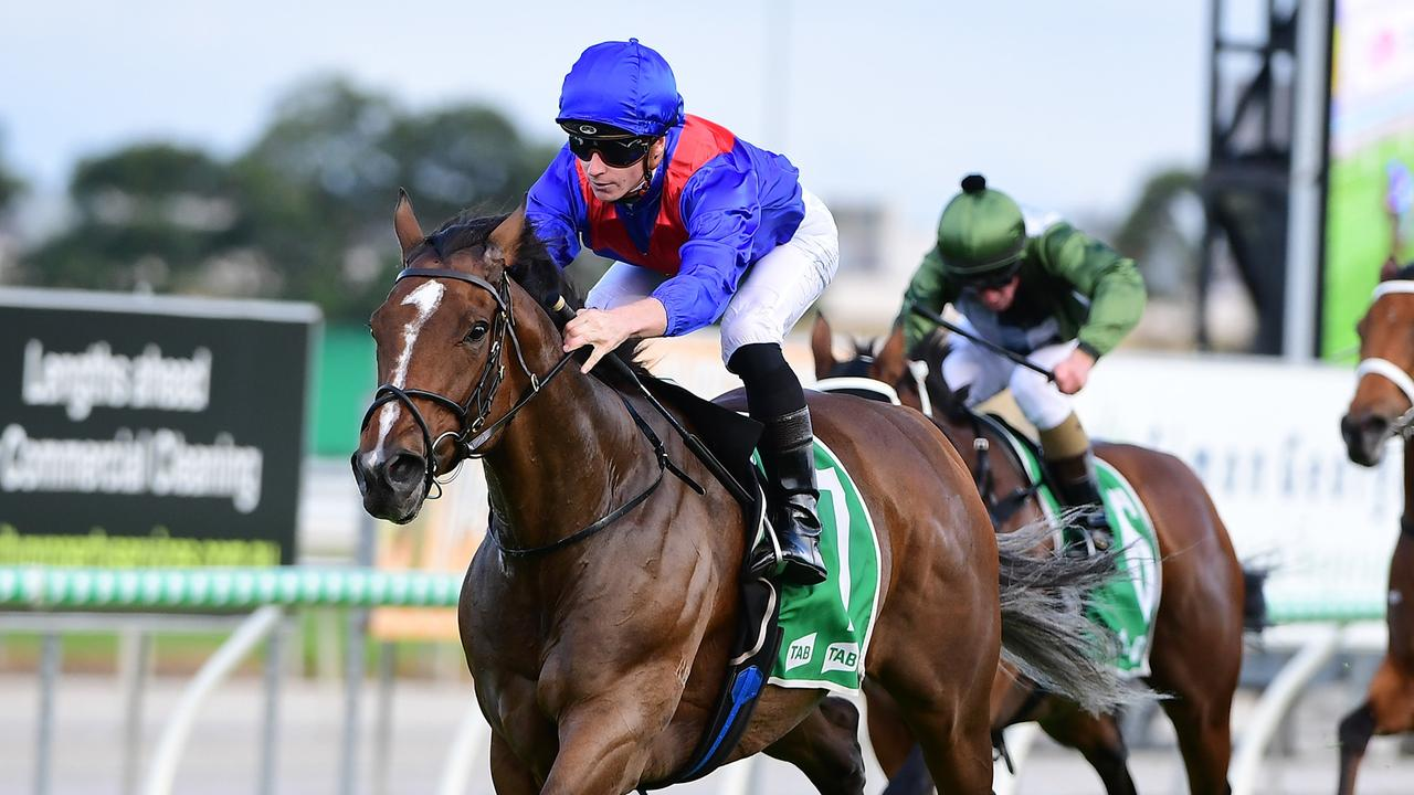 Zaaki is the favourite for the Doomben Cup. Photo: Grant Peters/Trackside Photography.