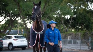 Doomben Cup prospect Avilius with strapper Lizzy Grimma after Doomben trackwork. Picture: Brad Fleet