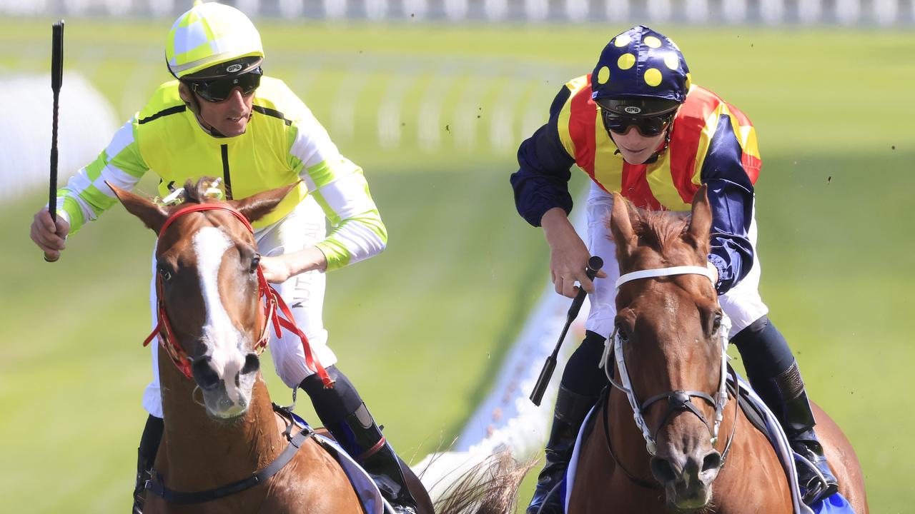 Joe Pride's stable star, Eduardo, is close to securing a slot in the $15 million The TAB Everest. Photo: Getty Images