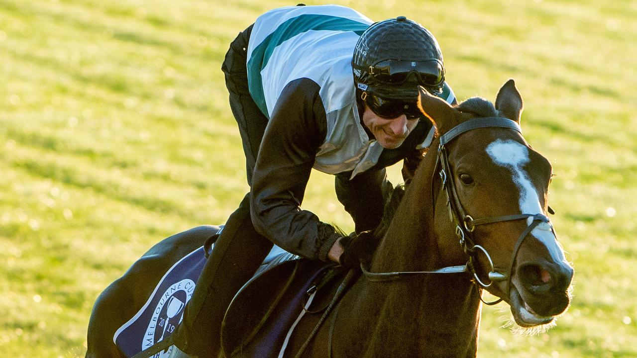 Lindsay Park stayer Constantinople is up for sale. Picture: Jay Town