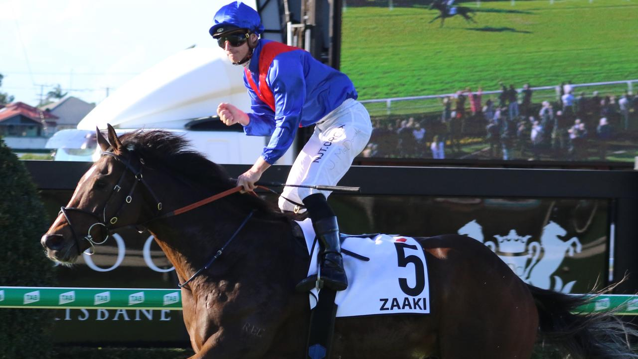 Could an increase in prizemoney see rising star Zaaki and top mare Verry Elleegant clash in the Hill Stakes? Photo: Grant Guy