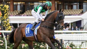Flying Award will make his debut for the Corstens stable in South Australia. Picture: Racing Photos via Getty Images