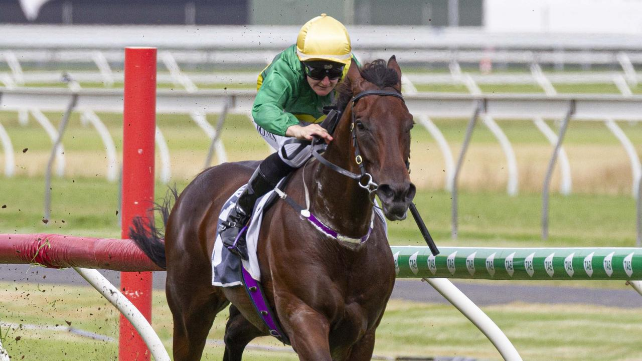 Stradbroke Handicap contender Savatoxl will need to be vetted again. Picture: Atkins Photography