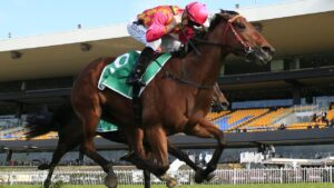 Talented mare Steel Diamond resumes form a spell for new trainer Chris Waller at Royal Randwick on Saturday. Photo: AAP Image