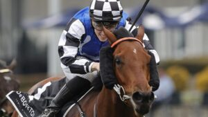 Kris Lees is confident about Wandabaa's chances in the Bob Charley. Picture: Getty Images