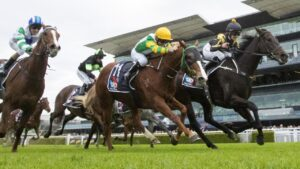 Bright Rubick (yellow) has been nominated in Sydney and Brisbane this weekend. Picture: Getty Images