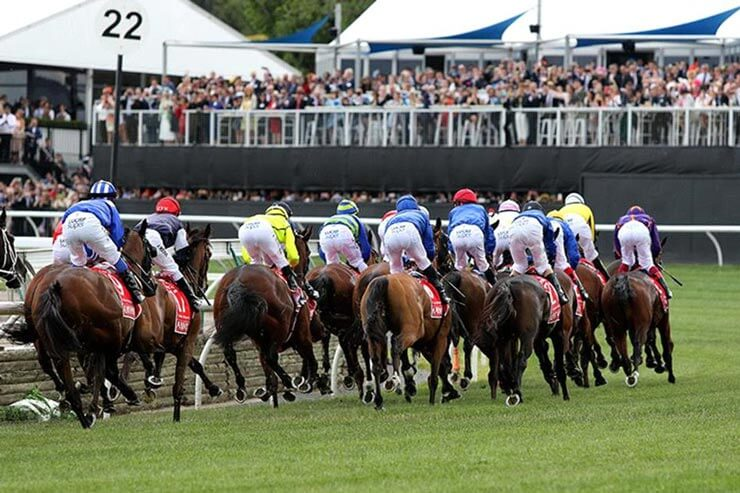 Horses racing in the Melbourne Cup