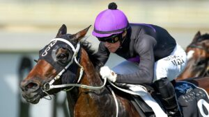Boomtown Lass is out to end a long run of placings. Picture: AAP