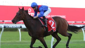 Lost and Running has been snapped up for The Everest. Picture: Grant Guy