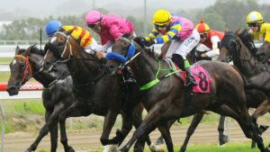 Racing in New South Wales on Friday is at Coffs Harbour.