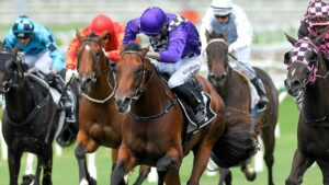 Tumbler Ridge has won two of his past three starts. Picture: AAP