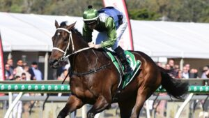 Incentivise dominated the Provincial Stayers Final at Ipswich. Picture: Trackside Photography