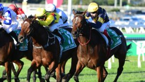 Craig WIlliams boots home Tofane (outside) to victory in the Stradbroke Handicap. Picture: Grant Peters/Trackside Photography.