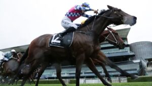 Man Of Peace won more races than any other horse in Sydney during the winter last year and his trainer Matt Dale is aiming for similar results in the weeks and months ahead. Picture: Getty Images