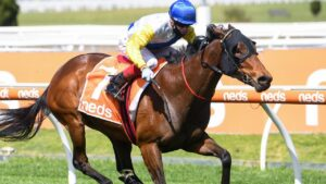 Craig Williams rides Pinyin to victory at Caulfield last year. Picture: Racing Photos via Getty Images
