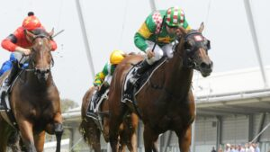 Jen Rules will have her final start this weekend at Eagle Farm before she heads to the breeding barn. Picture: AAP
