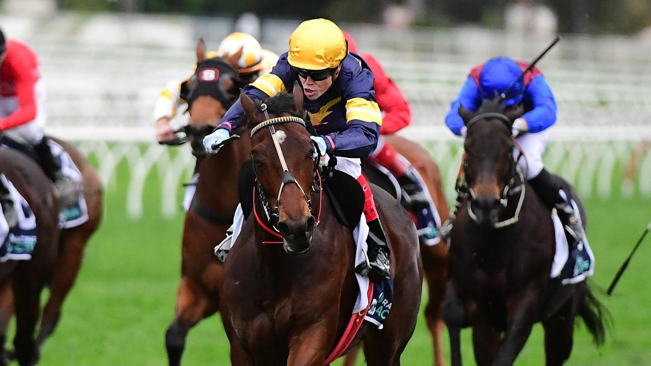 Craig Williams urges Tofane to victory in the Tatt's Tiara. Picture: Trackside Photography