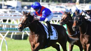 Zaaki won three on the trot in Queensland, including the Q22. Picture: Trackside Photography.