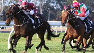 Up Trumpz wins at Warwick Farm. Picture: Grant Guy