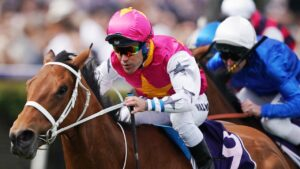 Haut Brion Her has injured in the autumn. Photo: AAP Image/Michael Dodge