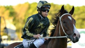 Snitz is looking to give Matthew Dunn his first win in the Ramornie Handicap at Grafton on Wednesday. Photo: AAP Image